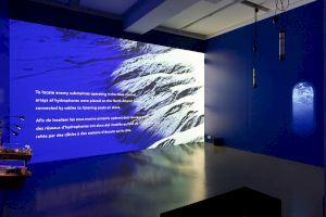 <p>Ursula Biemann, Acoustic Ocean, 2018 © Margot Montigny, CCS</p>