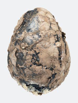 <p>Ovo por Olho (An Egg for an Eye), 2016-2018 © Pedro Wirz</p>