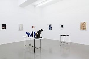 Mathis Gasser, Le musée et la planète, Centre culturel suisse, 2017 / © Simon Letellier