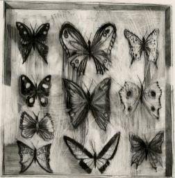 <p>Le Collectionneur, crayon gris sur papier, 2012 © Marc Bauer</p>