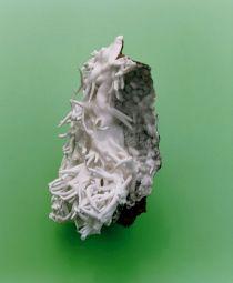 <p>Mineral (2007) Photo tirée de la série Flowers, Fruits & Portraits (C-print sur aluminium, dimensions variables) Copyright de l'artiste et Courtesy Gallery Bob van Orsouw (Zurich) et Salon 94 (NY)</p>