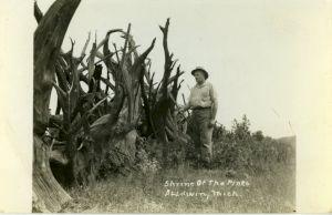 <p>Amy O'Neill, Shrine of the Pines, Baldwin, Michigan, USA / Photo: D.R.</p> — © Centre culturel suisse. Paris