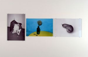 <p>Walter Pfeiffer, vue d'exposition / Photo: D.R.</p>
