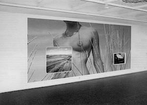 Installation d'Erik Steinbrecher dans l'exposition  / Photo: D.R. — © Centre culturel suisse. Paris