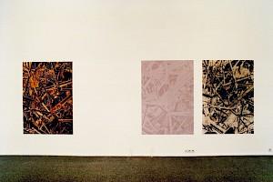 """Vue de l'exposition """"Pied-à-terre III"""" / Photo: Olivier Meylan — © Centre culturel suisse. Paris"""