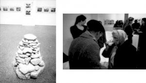 <p>Vues de l'exposition le soir du vernissage / Photo: Alain Ceyssac</p>