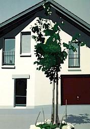 """""""Maison avec tentative de verdure"""" (carton de l'événement) / Émilienne Farny, 1980 — © Centre culturel suisse. Paris"""