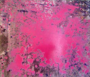 "<p>""Œuvre plate"" d'Adrian Schiess / Photo: D.R.</p>"