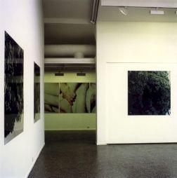 """<p>Hannah Villiger, """"Sculpture"""", vue d'exposition au CCS / Photo: D.R.</p>"""