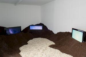 <p>Susanna Flock & Leonhard Müllner, Morgenerst Abendletzt, 2019  vue de l'exposition au Centre culturel suisse, © Margot Montigny</p>