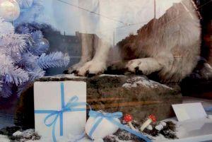 Andres Lutz & Anders GuggisbergLoup de Noël, 2009Tirage lambda brillant, 42 x 60cmédition limitée à 30 exemplairesprix: 300 euros (non-encadré) — © Centre culturel suisse. Paris