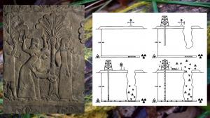 Gauche: Date harvest, Mesopotamia / Droite: USA Department of Energy: Pictogram for nuclear sites warning messages / Fond: Physarum Polycephalum (slime mould) — © Centre culturel suisse. Paris