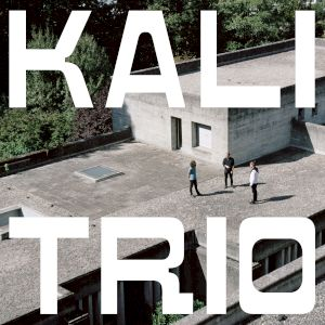 <p>Album Kali Trio © Simon Habegger</p>